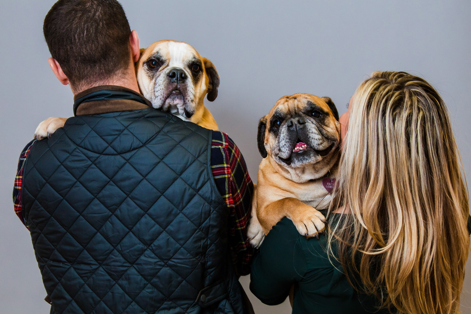 Couple holds their dogs for family portraits in Erie, PA